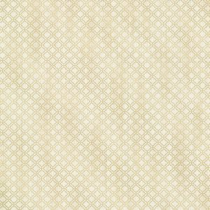 berkeley_beige_trellis_wallpaper_from_the_avalon_collection_by_brewster_home_fashions_c2bffba4-b45c-4333-bbae-c90a848bd9d3.jpg