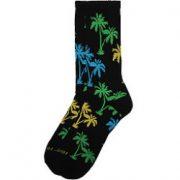 palmtreessum-1nail.jpg