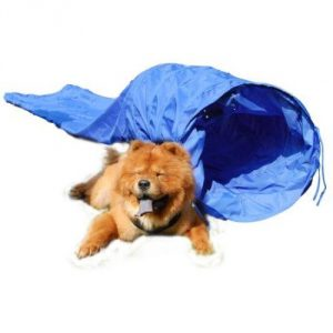 15-dog-agility-tunnel-pet-training-equipment-with-carry-case-blue.jpg