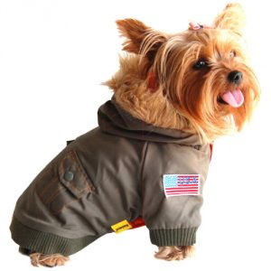 anima-army-bomber-style-dog-and-pet-jacket-2365a72d-660a-4488-86fe-8a7bf6c44aa5_600.jpg