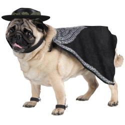 zorro-pet-costume-sz-lg.jpg